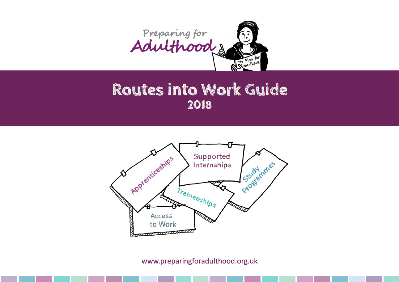 Routes Into Work Guide